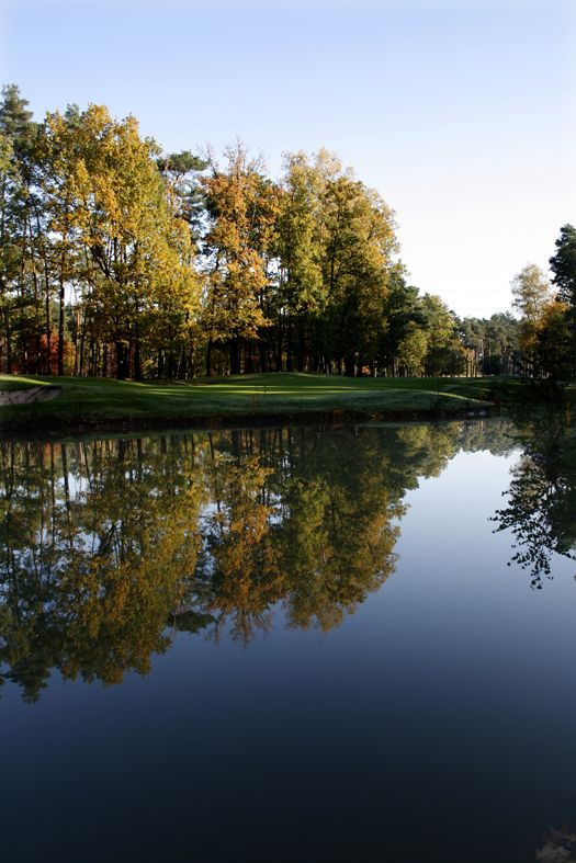 Golfforum